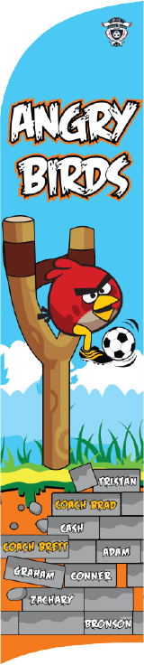Angry Birds (Red) Custom Double-Sided Team Wind Flag