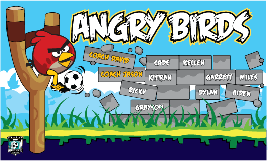 Angry Birds 1 Custom Banner (Red)
