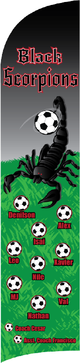 Black Scorpions Custom Double-Sided Team Wind Flag
