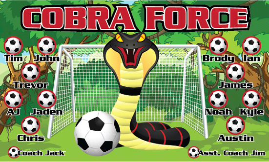 Cobra Force Custom Vinyl Banner