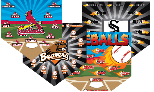 Create Your Own Custom Home Plate Banner