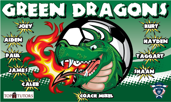 Green Dragons Banners Physiotherapy Banners