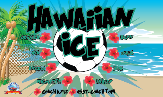 Hawaiian Ice Custom Vinyl Banner