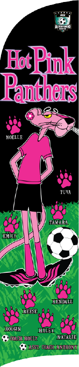 Hot Pink Panthers Custom Double-Sided Team Wind Flag