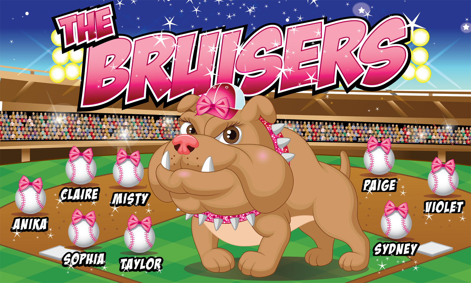 The Bruisers Custom Vinyl Banner