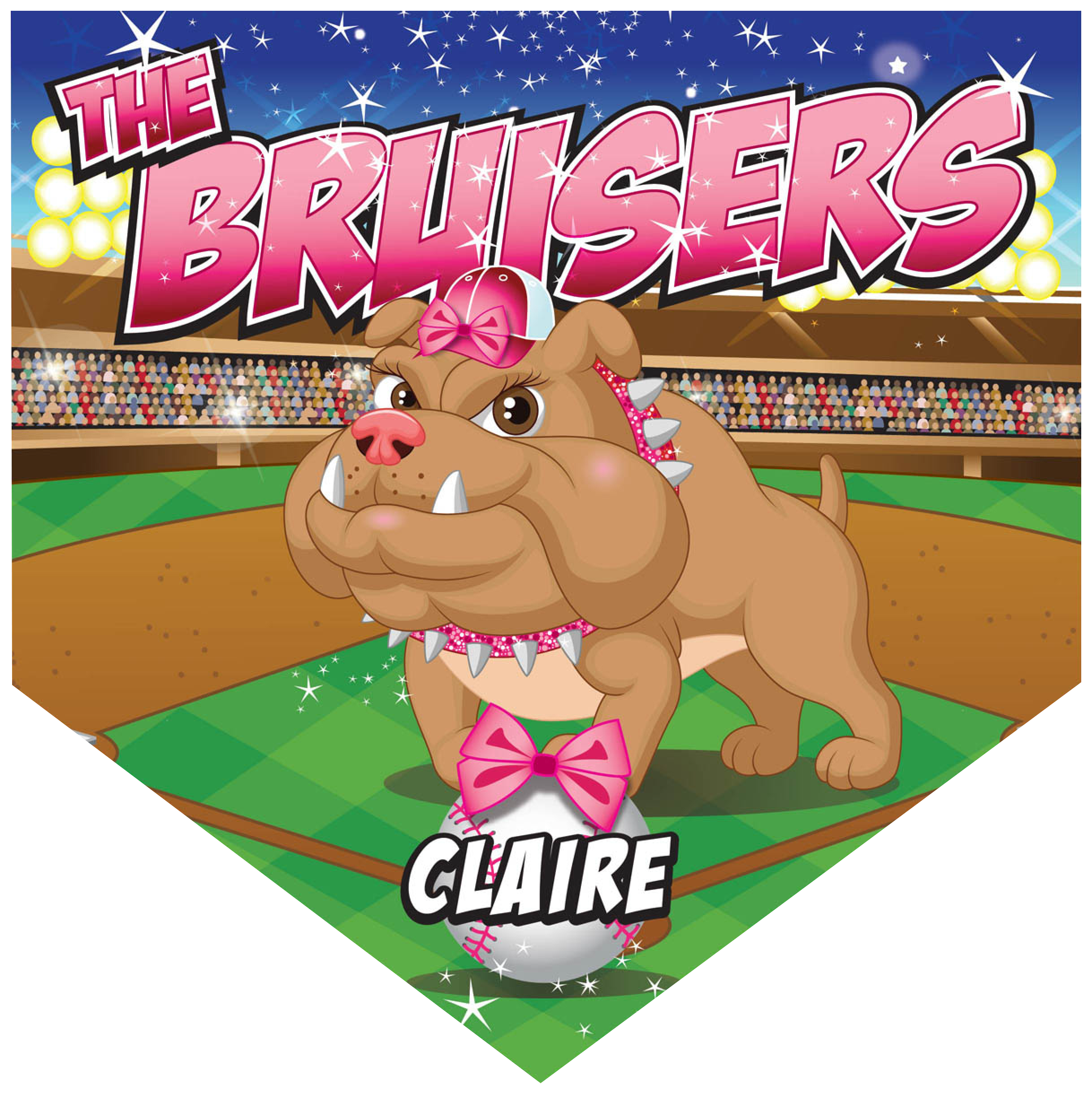 The Bruisers Home Plate Individual Team Pennant