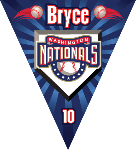 Washington Nationals Triangle Individual Team Pennant