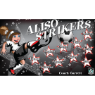 Aliso Strikers Custom Vinyl Banner