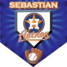 Astros (Alternate) Custom Home Plate Banner