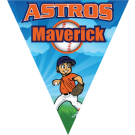 Astros Triangle Individual Team Pennant