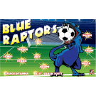 Blue Raptors Custom Vinyl Banner