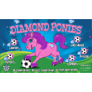 Diamond Ponies Custom Vinyl Banner