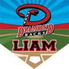 Diamondbacks Custom Home Plate Banner