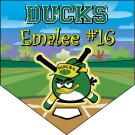 Ducks Home Plate Individual Team Pennant