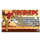 Firebirds Custom Vinyl Banner