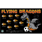 Flying Dragons Custom Vinyl Banner