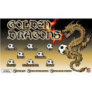 Golden Dragons Custom Vinyl Banner