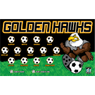 Golden Hawks 1 Custom Vinyl Banner