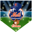 Mets Home Plate Individual Team Pennant