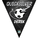 Quick Silver Triangle Individual Team Pennant