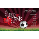 Red Gems Custom Vinyl Banner