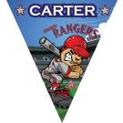 Rookie Rangers Triangle Individual Team Pennant