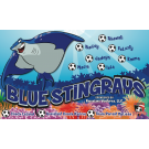Blue Stingrays Custom Vinyl Banner
