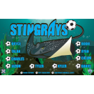 Stingrays 1 Custom Vinyl Banner