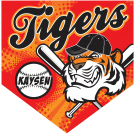 Tigers Home Plate Individual Team Pennant