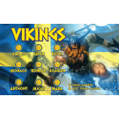 Vikings Custom Vinyl Banner