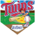Twins Home Plate Individual Team Pennant