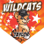Wild Cats Home Plate Individual Team Pennant